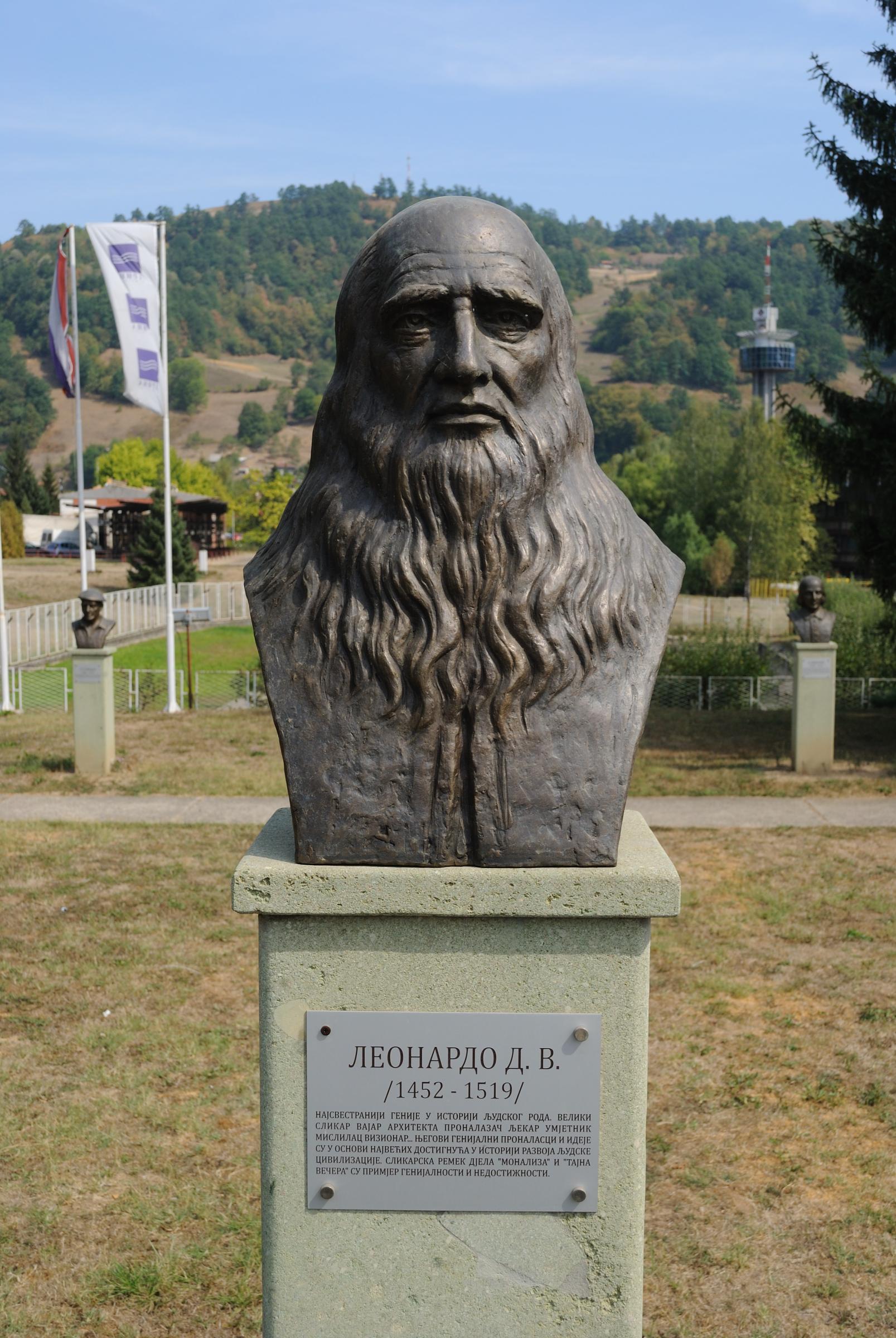 Leonardo_D_V